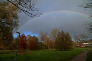mN. O. (1154)c 028s+, Regenbogen über Herbstbäumen, Moorteichwiese